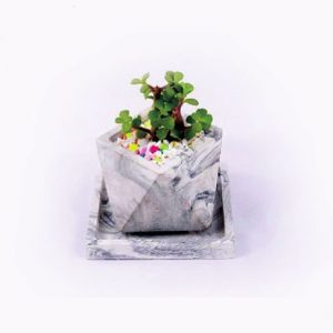 گلدان و زیر گلدانی سنگی